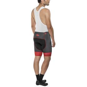 PEARL iZUMi Elite Pursuit LTD Bib Shorts Men chain rogue red/ port